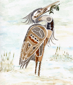 Haida on Haida Heron  Watercolour